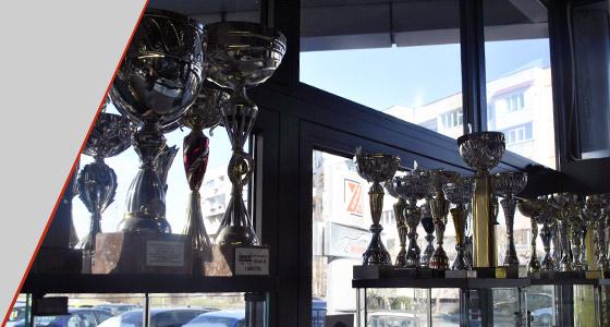 постижения и награди